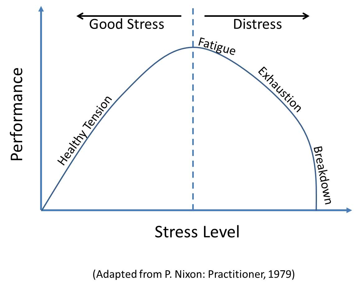 stress can have positive effects-essay Stress can be a positive inducement resulting in an examples of the short term effects of stress are seen in the this type of stress will have little.