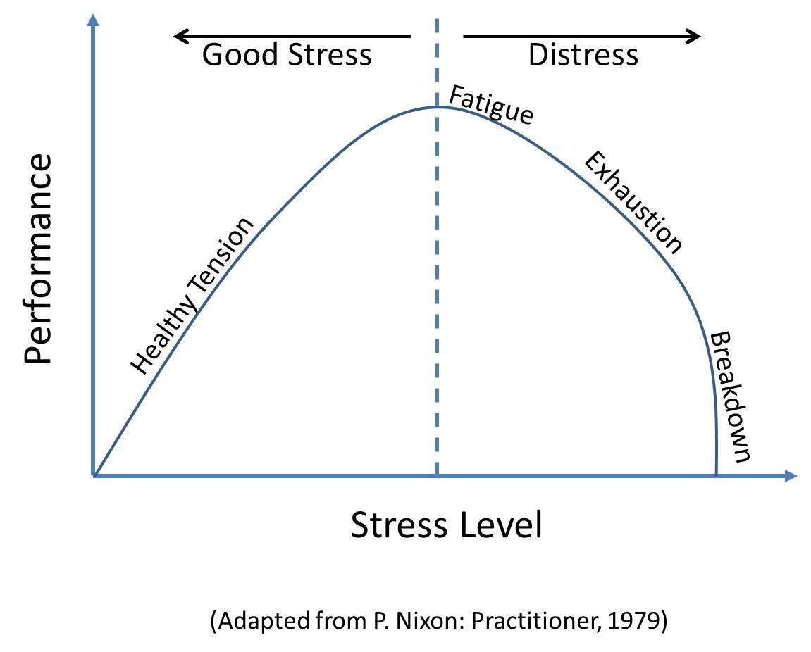 early raises stress levels - HD1151×926