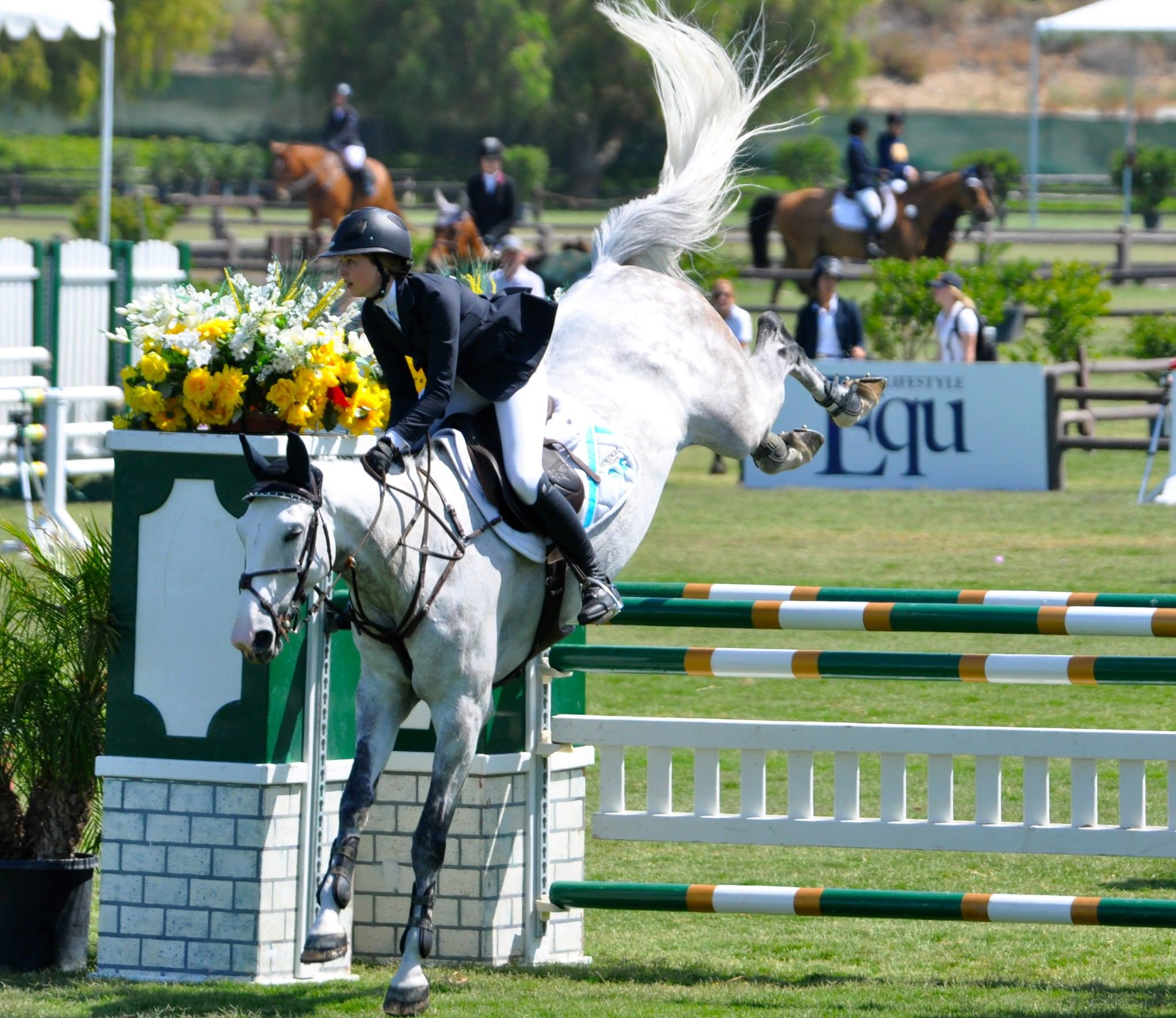 Equestrian S Journey To National Success The Campanile
