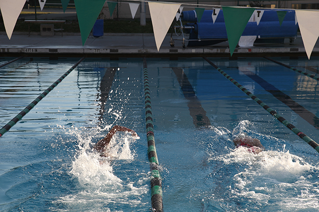 Girls swimming and diving team undefeated the campanile - Palo alto ymca swimming pool schedule ...